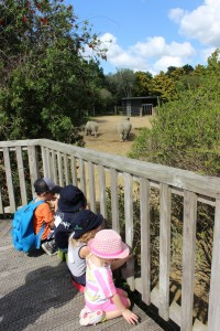 April 2015 Zoo Trip Gallery